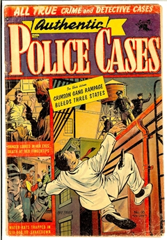 Authentic Police Cases #36