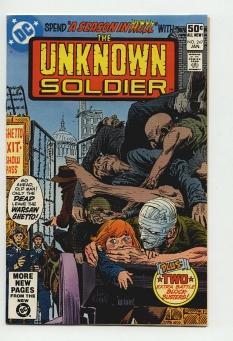 Unknown Soldier #247