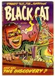 Black Cat #46