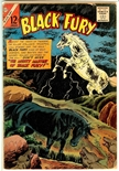 Black Fury #56