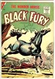 Black Fury #6