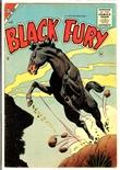 Black Fury #2