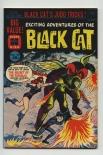 Black Cat #63
