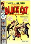 Black Cat #22