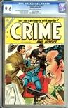 Crime & Justice #20