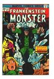 Frankenstein #12