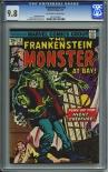 Frankenstein #14