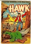 Hawk #11