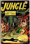 Jungle Comics #9