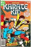 Karate Kid #12