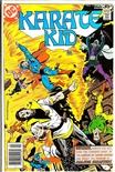 Karate Kid #13