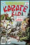 Karate Kid #5
