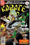 Karate Kid #8