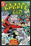 Karate Kid #10