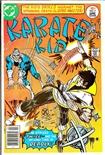 Karate Kid #7