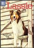 Lassie #41