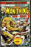 Man-Thing #16