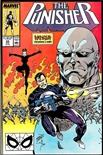 Punisher #22