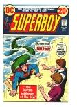 Superboy #194