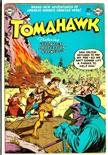 Tomahawk #22