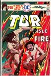 Tor #3