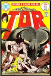 Tor #2