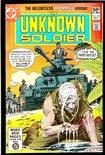 Unknown Soldier #246